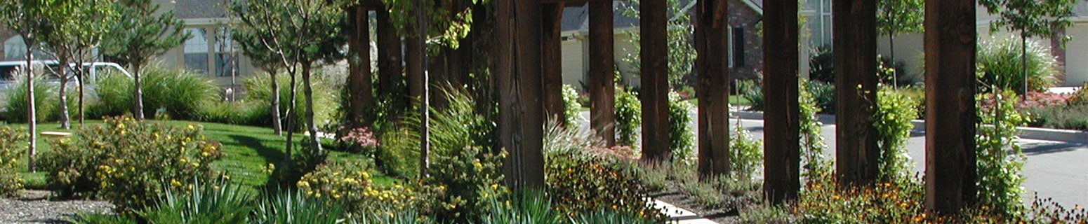 Harris Ranch subdivision sidewalk landscaping
