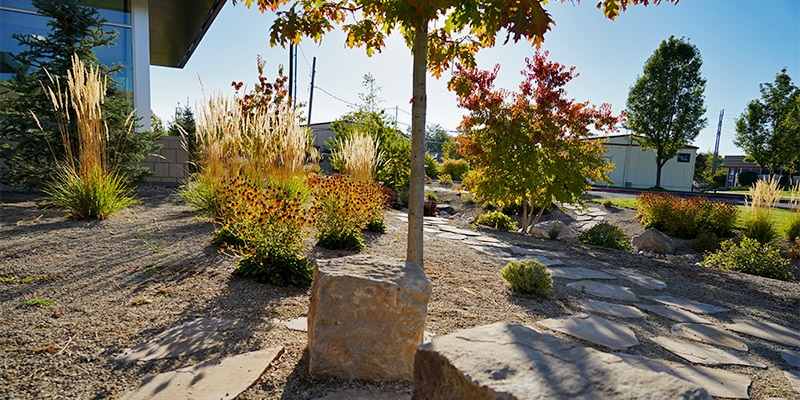 Variety of grasses and trees surrounding stone paver walkway