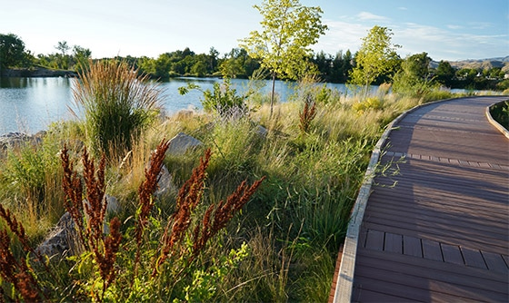 Esther Simplot boardwalk surrounded by natural wetland lanscaping